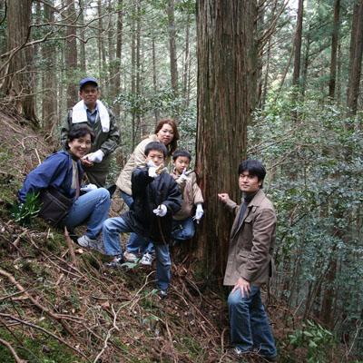 伐採したヒノキの大木。