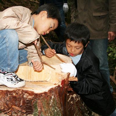 伐り株の年輪を数える子どもたち。
