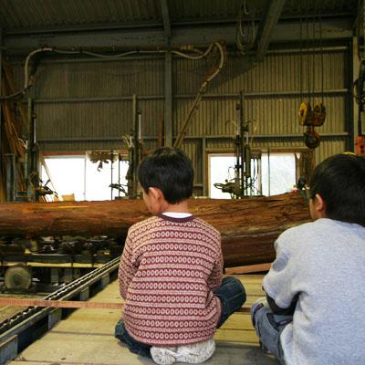 製材の様子を見学中の子どもたち